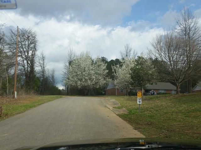 Munford Village, Munford, AL, blooming entrance