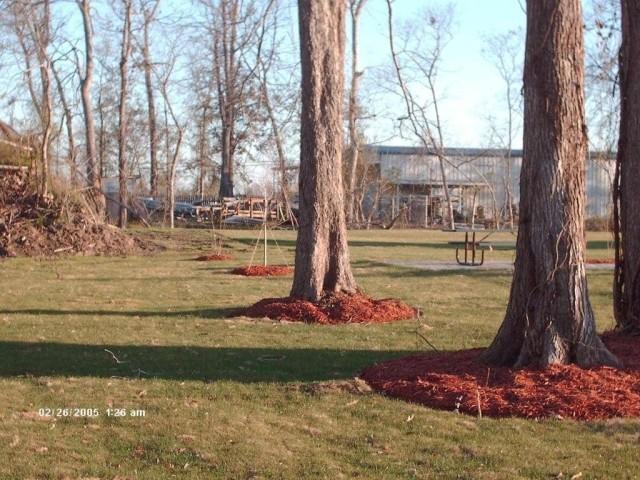 River West, Port Allen, Louisiana, grounds