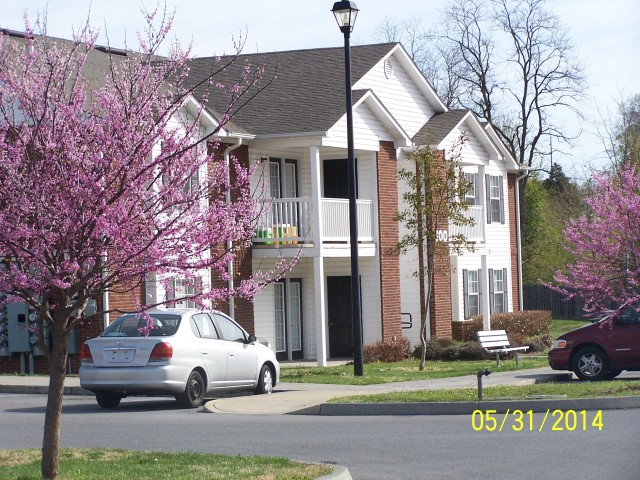 Sage Meadows, Briston, TN building street light and blooming trees