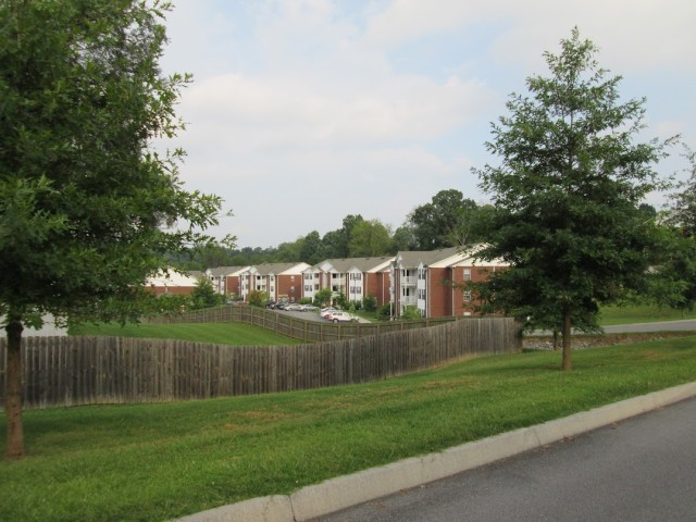 Sage Meadows, Briston, TN fence row