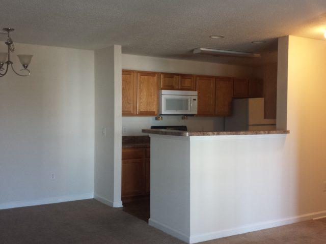 Palmetto Ridge, Lake City, SC, apartment kitchen